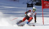 High-octane racing action at the 2015 Army Alpine Championships